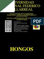 HONGOSFINAL2.pptx