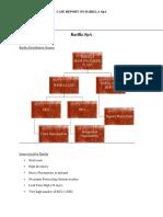 Barilla SPA Report
