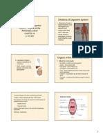 anatomy_digestive_system.pdf