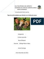 enfermedadesdelcultivodecacaoespe-131022215611-phpapp01.docx