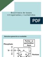 Metab_BN_y_nucleotidos_A