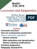 Chromatin and Epigenetics