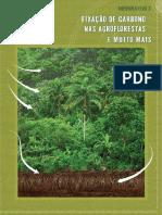 COOPERAFLORESTA fixacao de carbono nas agroflorestas.pdf