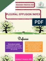 presentasi PEI FIXED.pptx