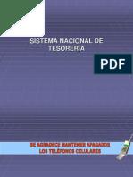 290424425 Sistema Nacional de Tesoreria
