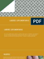 Labores suplementarias.pptx