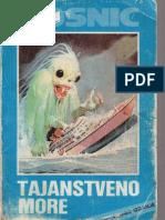 Ahmed Bosnic - Tajanstveno more.pdf