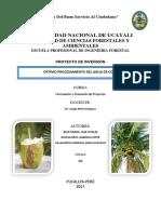 Proyecto Agua de Coco 1