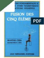 Chia Mantak - Chia Maneewan - Fusion Des Cinq Elements