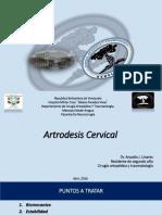 Artrodesis Cervical