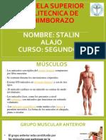 Músculos de La Pared Anterior y Antero-lateral Del Torax