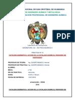 Practica n10 Catalisis Enzimatica Accion de La Catalaza Sobre El Peroxido de Hidrogeno 1