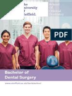 University of Sheffield Bachelor of Dental Surgery Brochure