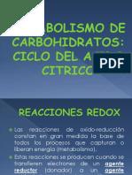 Metabolismo de Carbohidratos Ciclo Del Acido Citrico