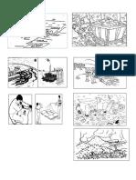 animales nativos y contamincaion 2° actividades.docx
