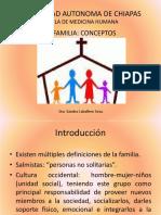 (7)La familia 1