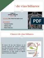 Cancer Vias Biliares