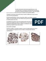 Componentes Minerales