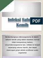 isk.pptx