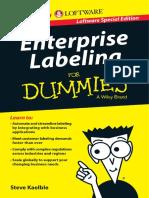 Enterprise Labeling for Dummies