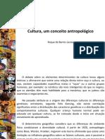 1resumoculturalaraia 150917032449 Lva1 App6892