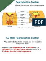FemaleRepro(2)