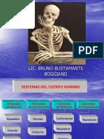 Huesos y Articulaciones Biomedicas (1)