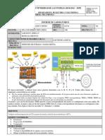 Lab_1-informe.docx