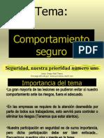 COMPORTAMIENTO SEGURO
