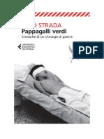 Leggi Libri Online.. Pappagalli Verdi Di Gino Strada (ITALIANO) PDF eBook Epub