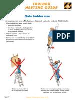 Tg06 10 Safe Ladder PDF En
