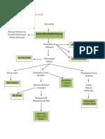 Woc Dialisis Peritoneal
