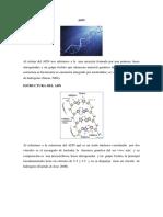 Estructura Del Adn Biologia Con Imagenes