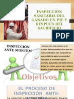 inspeccion sanitaria del ganado en pie