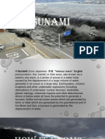 Soc. Sci (Tsunami)
