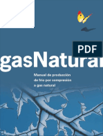 Gas Natural Manual de Produccion