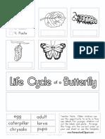 Butterfly Cut Paste