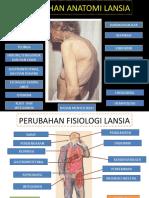 Perubahan Anatomi Dan Fisiologi Lansia