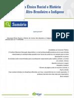 10 Educacao Etnico Racial e Historia Da Cultura Afro Brasileira e Indigena
