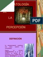 alteraciones-sensoperceptivas