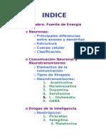 NeuronasyNeurotransmisores (1)