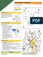 2015_realiser-carte-mentale.pdf