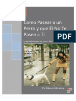 Como Pasear a Un Perro y Que Él No Te Pasee a Tí