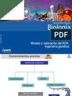 Clase 1 Modelo y replicación del ADN  Ingeniería genética 2015.ppt