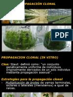 Clases de Cultivo de Tejidos 2017 Cp Unidad 2c