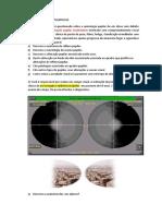 oftalmo neuro ed.docx
