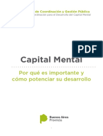 Informe Capital Mental