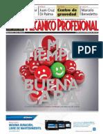 Mecanico Profesional Mayo 2014 - N95