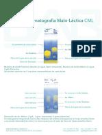 Ejemplos Cromatografia CML_Sp