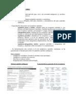 ANALGESICOS OPIOIDES.docx